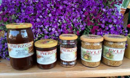 MIODY U EMILKI – produkty naturalne i wiejskie